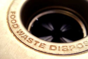 The Colony Garbage Disposers